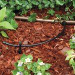 Rain Bird hose T22-250S Drip Irrigation hose Review 2019